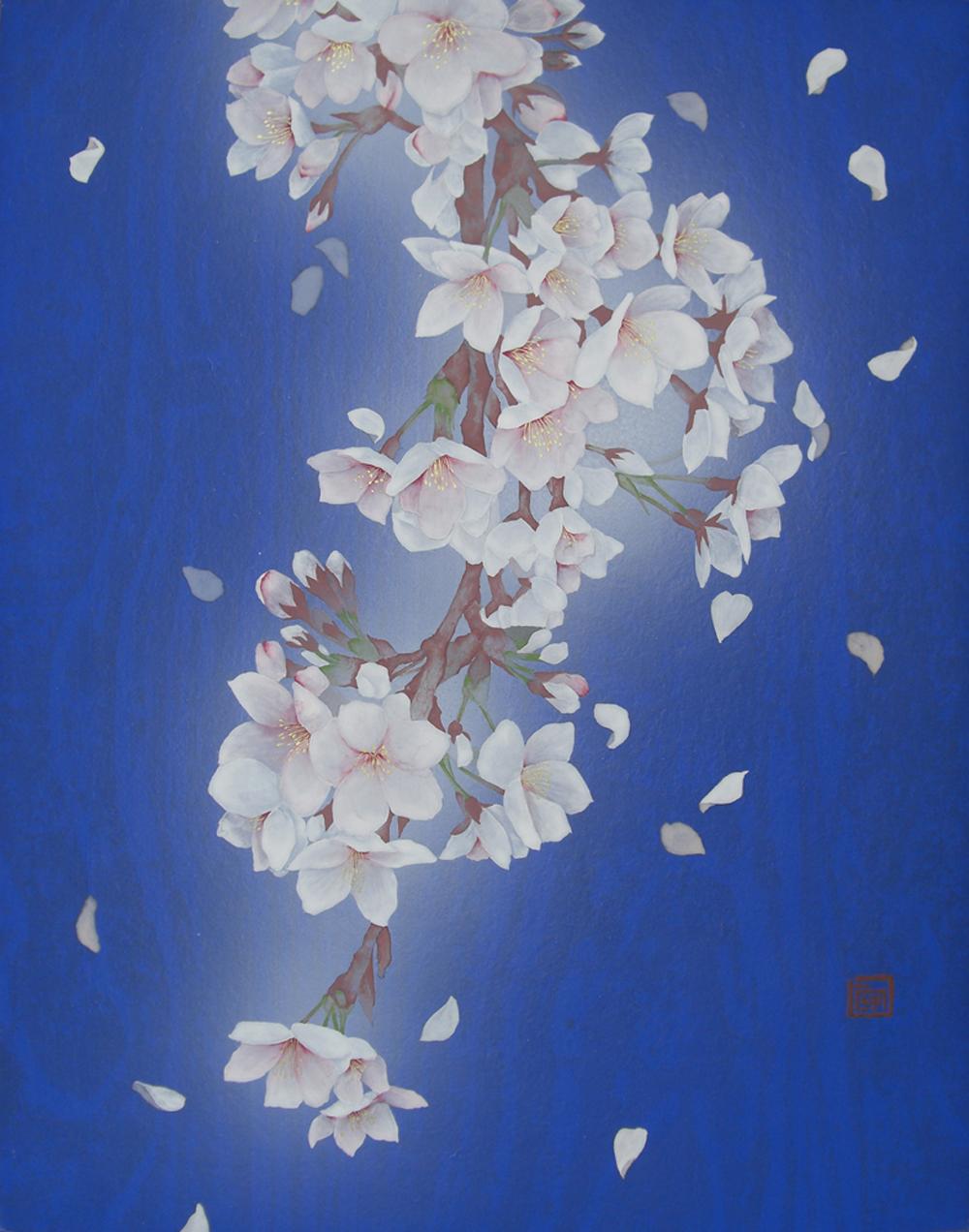 桜-舞い-F6
