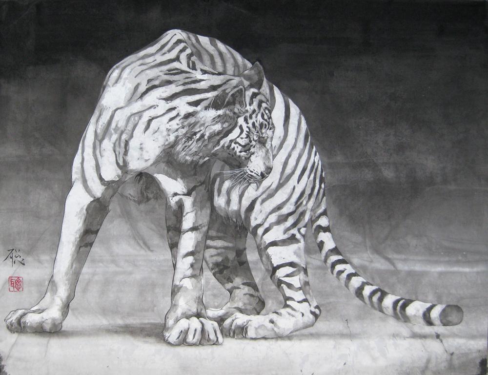 P15 白虎